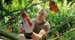 Veterans Become Farmers - Organic Connections | Urban Aquaponics Farm | Scoop.it