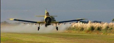 El herbicida más utilizado del mundo entra en la lista negra del cáncer | MY TOPIC | Scoop.it