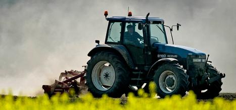 PowNed : Per dag kappen zeven boeren ermee   Vertical farming   VertiFarm©   Scoop.it