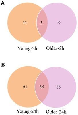 Transcriptome Analysis of Cytokinin Response in Tomato Leaves | Plant Genomics | Scoop.it