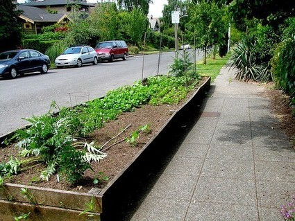 Urban Green Streets: City Gardens and Greenspace | green streets | Scoop.it
