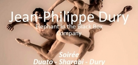 BALLET: XXVIII Festival Madrid en Danza 2013. Elephant in the Black Box Company en los Teatros del Canal. 9 de noviembre. | Terpsicore. Danza. | Scoop.it