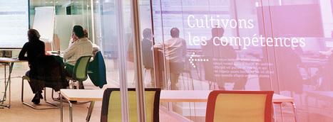 Formation décideurs coopératives : leur rôle majeur! | Formations | Scoop.it