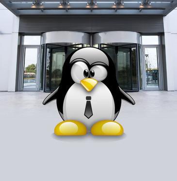Open source : un écosystème très riche au service des entreprises | open source definition | Scoop.it