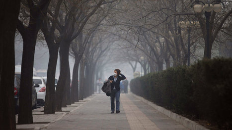Most Chinese Cities Fail Minimum Air Quality Standards, Study Says - New York Times | BUSS 4 SEC A | Scoop.it