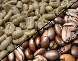 Is Green Coffee > Coffee? | Coffee News | Scoop.it