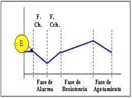 Síndrome general de adaptación (S.G.A.)   Acondicionamiento. Kenya Fiesenig.   Scoop.it