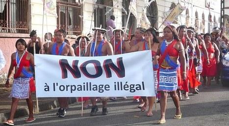 Cayenne: manif contre l'orpaillage illégal. | DENIS HUMBERT ECRIVAIN | Scoop.it