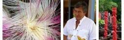 Community management tourisme et loisirs - Jacques Tang | Community manager, my future | Scoop.it