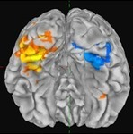 Laboratory of Cognition and Emotion: University of Maryland   Social Neuroscience Advances   Scoop.it