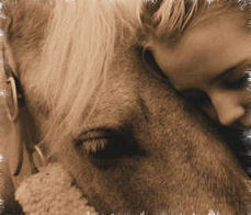 Values every horse owner should have | Horse Care | Scoop.it