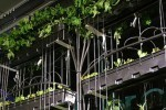 Luscious Vertical Gardening Curtain by Bohn and Viljoen Uses ... | Vertical Farm - Food Factory | Scoop.it