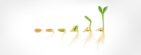 Pourquoi utiliser le Lead Nurturing pour booster ses ventes B2B ? | TPE-PME | Scoop.it