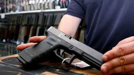 Maryland sheriff says new state gun law violates 2nd Amendment - Fox News   Gov & Law - Michael Hanson   Scoop.it