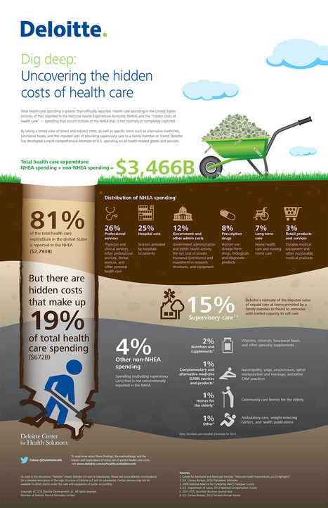 Impacts and implications of rising out-of-pocket health care costs | Deloitte US | | Health Care Business | Scoop.it