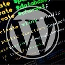 My Top 10 WordPress Code Snippets - WP Daily | All Wordpress news | Scoop.it