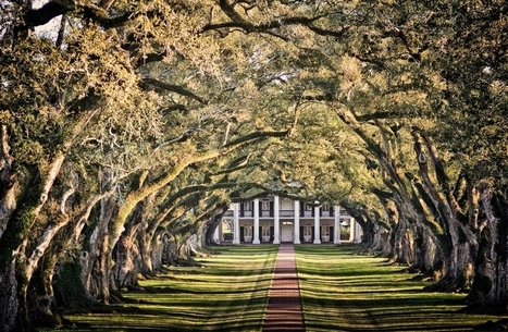 Awe-Inspiring Trees (20): Oak Alley Plantation, Louisiana ... | Oak Alley Plantation: Things to see! | Scoop.it