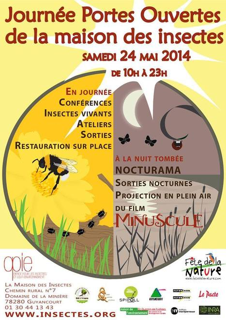 Journée portes ouvertes de la Maison des insectes | MARTINEZ André | Scoop.it