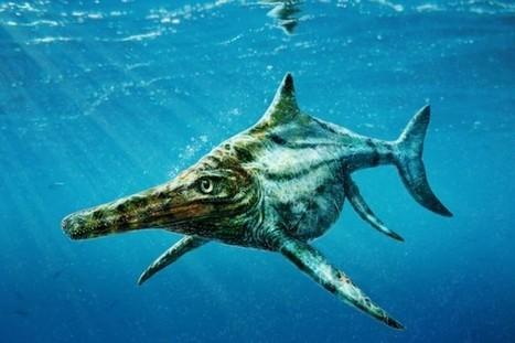 La Presse.ca | L'extinction des ichtyosaures due à un réchauffement climatique | L'actualité de l'Université de Liège (ULg) | Scoop.it