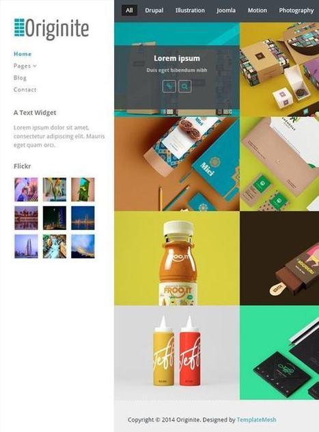 TM Originite - Responsive Portfolio WordPress Theme | Free & Premium Joomla Templates and WordPress Themes | Scoop.it