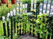 Container Gardening Alliance | Vertical Farm - Food Factory | Scoop.it