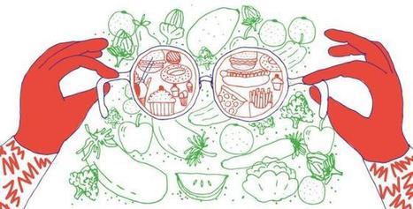 Cómo llevar una dieta sana | Biología de Cosas de Ciencias | Scoop.it