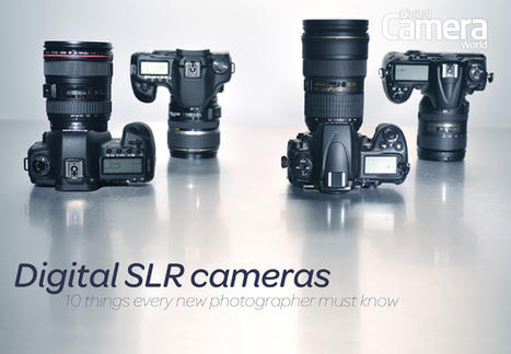 Digital SLR cameras explained: 10 things every new photographer must know | Digital Camera World | Everything Photographic | Scoop.it