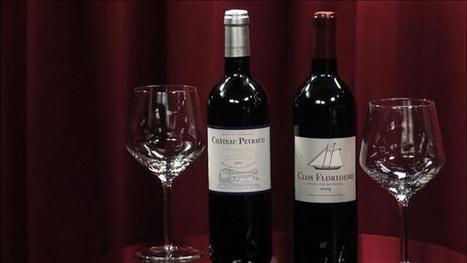 Demystifying Bordeaux Wines by Lettie Teague | Bordeaux wines for everyone | Scoop.it