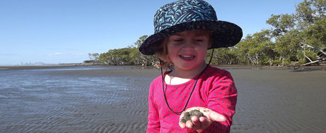 Home - Nudgee Beach Environmental Education Centre | Museum Matters | Scoop.it