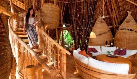 Beautiful Luxury House Built From Bamboo - cozy resort | Cozy Resort | Scoop.it