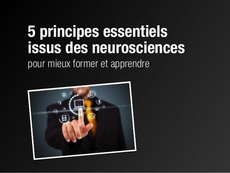 5 principes issus des neurosciences pour favoriser l'apprentissage en formation | Ressources d'autoformation dans tous les domaines du savoir  : veille AddnB | Scoop.it