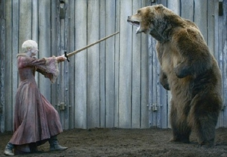 Top 10 Ways To Escape From A Bear - TopYaps   Interesting Facts   Scoop.it