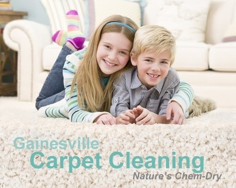 Carpet Cleaning Gainesville VA, Carpet Cleaners | Nature's Chem-Dry | flooded basement | Scoop.it