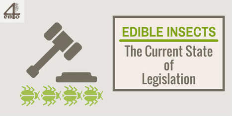 Current State of Legislation For Insects As Food - 4ento | Entomophagy: Edible Insects and the Future of Food | Scoop.it