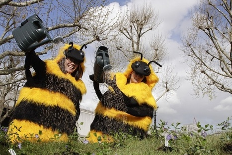 Pollinator Strategy stings government into action over declining bee population | Life on Earth | Scoop.it