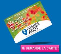 Histoire de Greffes | Informations scientifiques | dons d'organes | Scoop.it