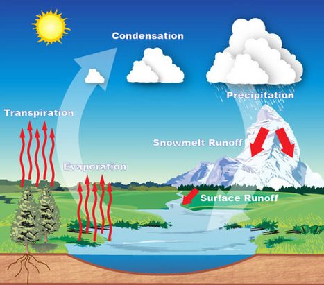NWS JetStream - The Hydrologic Cycle | The Water Cycle | Scoop.it