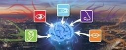 Schéma cognitif l'ADN du savoir | Cartes mentales | Scoop.it