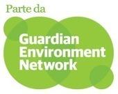 InfoAmazonia: dados do desmatamento em setembro estão disponíveis | Agronegócio | Scoop.it