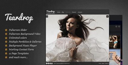 Teardrop - Flexible Photo & Portfolio WP Theme | Blogging Tips and Tricks | Scoop.it