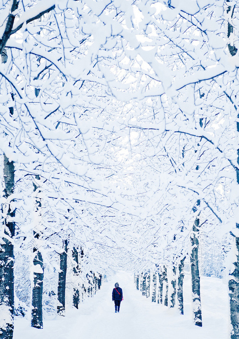 19 Breathtaking Photos of Winter Wonderlands Around the World | Life @ Work | Scoop.it