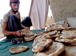 Lutter contre l'insécurité alimentaire en Afghanistan | Action humanitaire dans le monde et ONG | Scoop.it