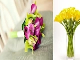 send flowers to uk | Flowers Gifts Attraction | Scoop.it
