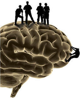 The neuroscience of leadership | Psychology and the Brain | Scoop.it