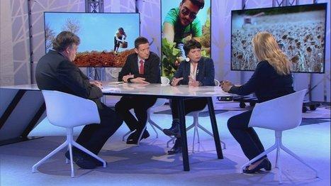 Glyphosate : le désherbant de la colère  - France 24   OGM, Pesticides, Les alternatives et les problèmes de l'agriculture chimique   Scoop.it