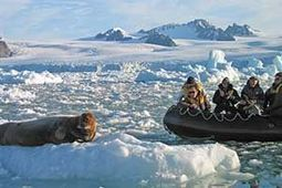 Spitsbergen Travel - Arctic Expedition Cruise Lines to Svalbard | The Arctic Circle | Scoop.it