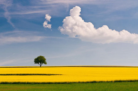 50 Mind-Blowing Examples of Landscape Photography | Photography | Scoop.it