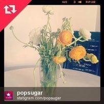How to Repost Instagram Photos | Social Media Power | Scoop.it