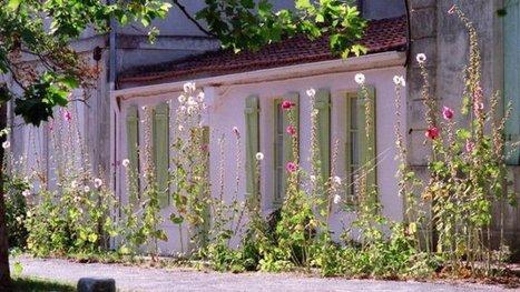 La Nature reprend ses droits dans les rues de Bordeaux | Nouveaux paradigmes | Scoop.it