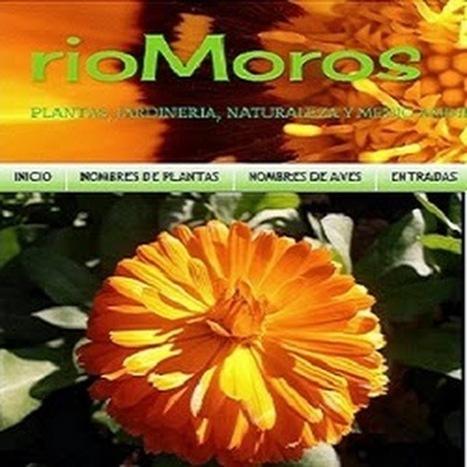 rioMoros - YouTube | Recursos de Botánica para Secundaria | Scoop.it
